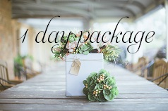 1 day package